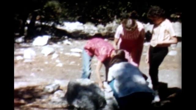 1965 camping yosemite - white shirt stock videos & royalty-free footage