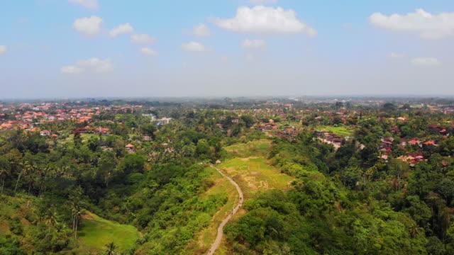 campuhan ridge walk in ubud, bali indoensia - campuhan stock videos & royalty-free footage
