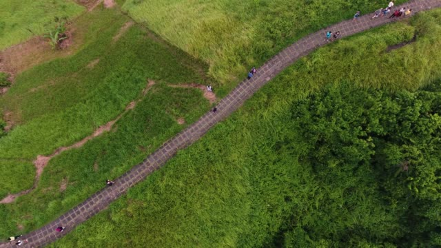 campuhan ridge walk in ubud - campuhan stock videos & royalty-free footage