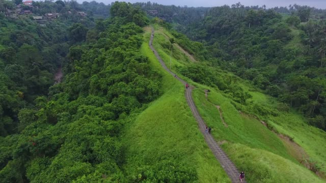campuhan ridge walk in ubud - ridge stock videos & royalty-free footage