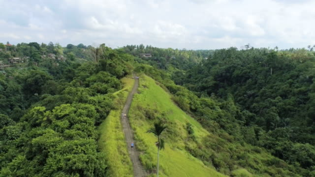aerial ws campuhan ridge walk, ubud, bali, indonesia - campuhan stock videos & royalty-free footage