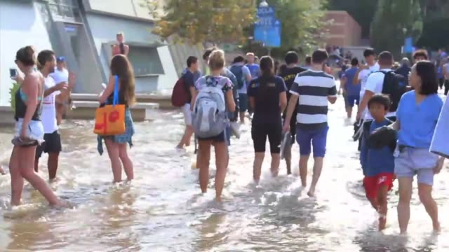 campus flooded after water main break - ucla stock videos & royalty-free footage
