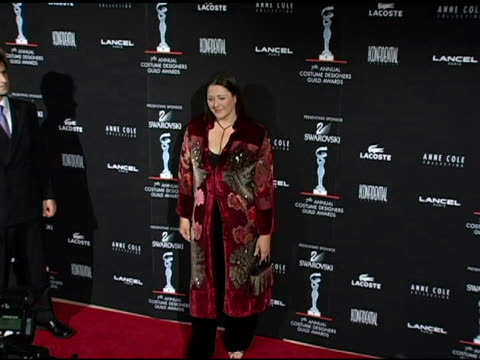 camryn manheim at the 7th annual costume designers guild awards gala at the beverly hilton in beverly hills, california on february 19, 2005. - camryn manheim stock videos & royalty-free footage