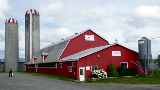 canada antigonish nova scotia farming a milk products farm called harbourside farm with red barn and family owned business - barn stock videos & royalty-free footage