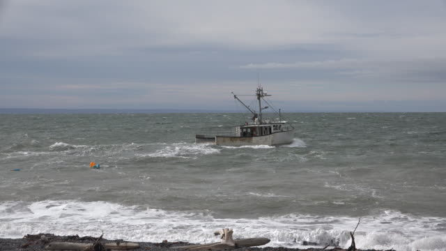 Canada Bay of Fundy boat in rough sea