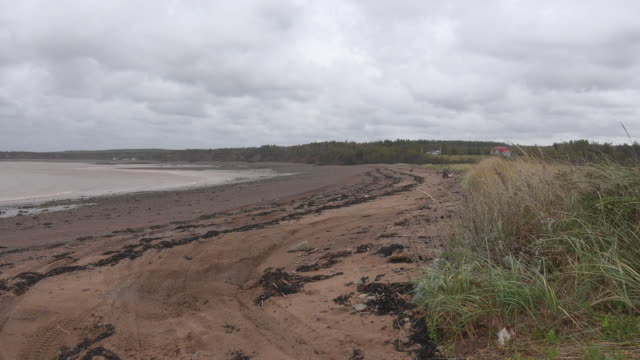 Canada Bay of Fundy curved beach