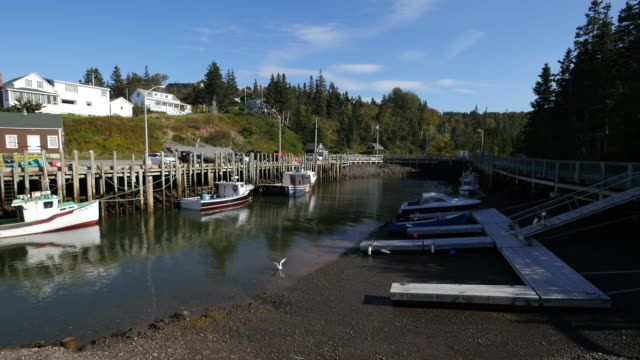 Canada Bay of Fundy Halls Harbour tide ebb time-lapse