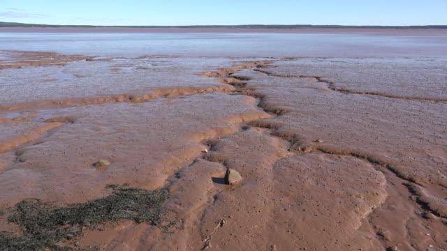 canada bay of fundy mud flat - mud flat stock videos & royalty-free footage