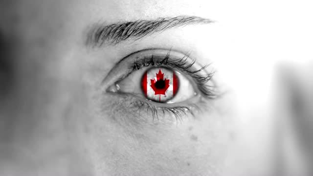 vídeos y material grabado en eventos de stock de ojo de canadá. hd - bandera de canada