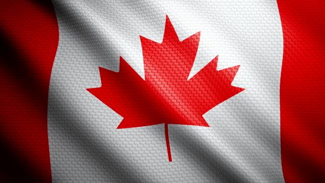 vídeos y material grabado en eventos de stock de bandera de canadá 4k - bandera de canada