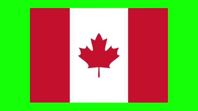 canada flag animation on green screen background, chroma key, loopable - politics icon stock videos & royalty-free footage