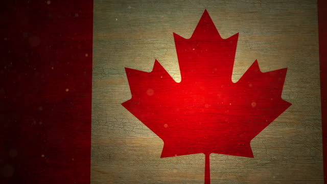 canada flag - grunge. 4k - bandiera del canada video stock e b–roll