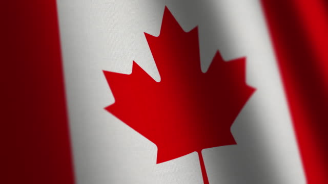 canada flag - loop. - bandiera del canada video stock e b–roll