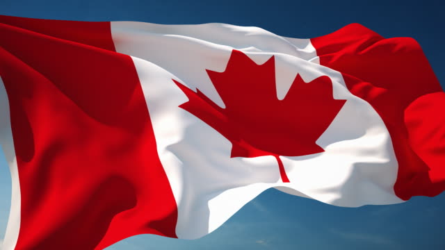 stockvideo's en b-roll-footage met 4k canada flag - loopbare - canada