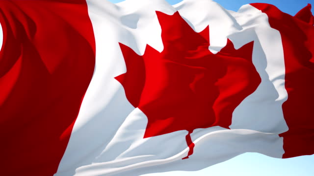 canada flag - election stock videos and b-roll footage