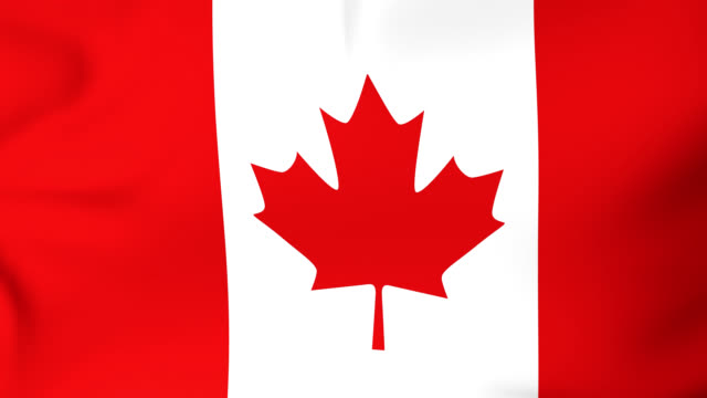 canada flag. - thank you stock videos and b-roll footage