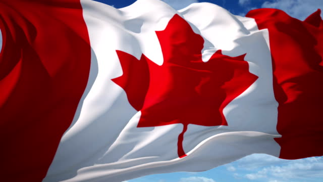 canada flag - national flag stock videos & royalty-free footage
