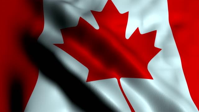 vidéos et rushes de drapeau canada - politique et gouvernement