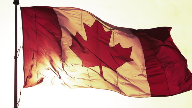 canada flag waving in the wind during the day - pole stock videos & royalty-free footage