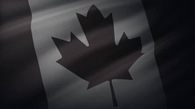 4k kanada flagge winken im wind mit sehr detaillierten stoff textur - argentinische flagge stock-videos und b-roll-filmmaterial