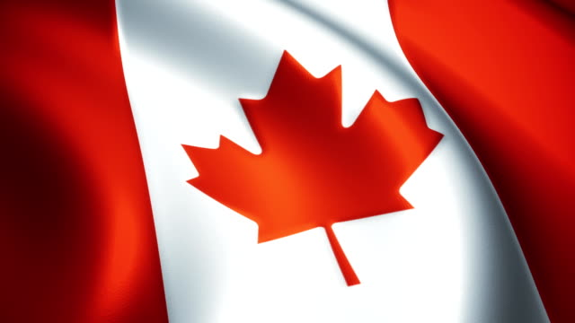 canada flag waving loopable - canada flag stock videos & royalty-free footage
