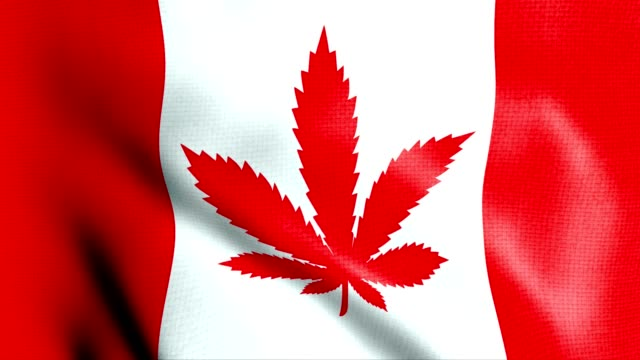 Canada flag with cannabis leaf legalization
