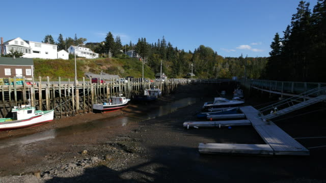 canada lowest low tide at docks - low tide stock videos & royalty-free footage