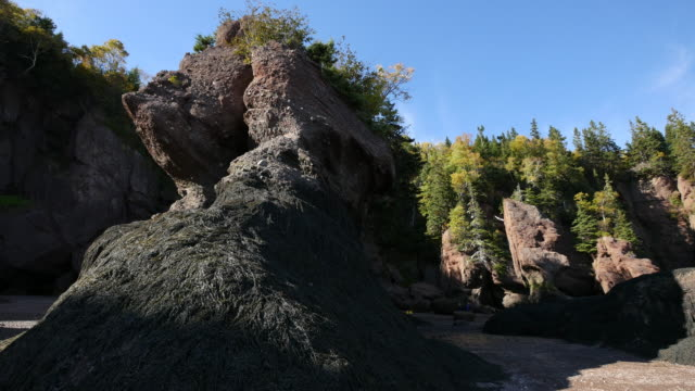 canada new brunswick hopewell rocks rounded rock - low tide stock videos & royalty-free footage