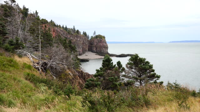 Canada Nova Scotia grassy shore of Bay of Fundy