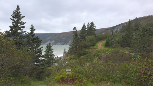 canada nova scotia hiking path along shore - atlantic ocean stock videos & royalty-free footage