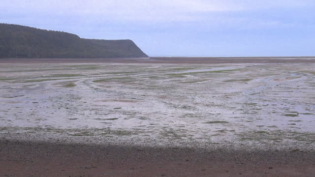 canada nova scotia low tide mud flat and headland pan - mud flat stock videos and b-roll footage
