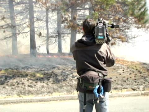 ms, canada, ontario, toronto, news camera man filming forest fire, rear view - ビデオカメラ点の映像素材/bロール