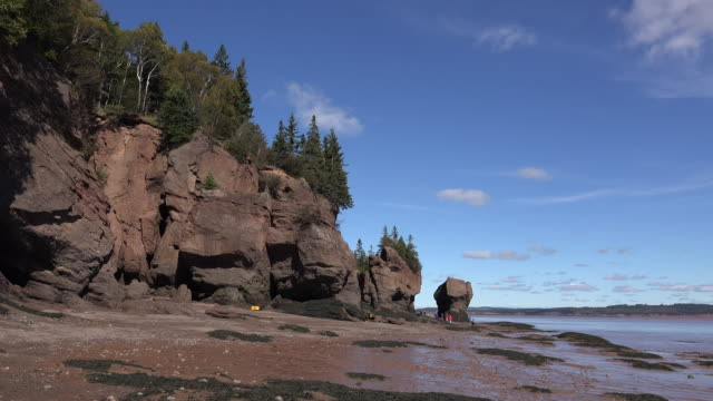 canada sunny day at hopewell rocks - low tide stock videos & royalty-free footage