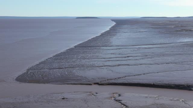 vídeos de stock, filmes e b-roll de canada tree frames view of mud flats at low tide zoom out - maré