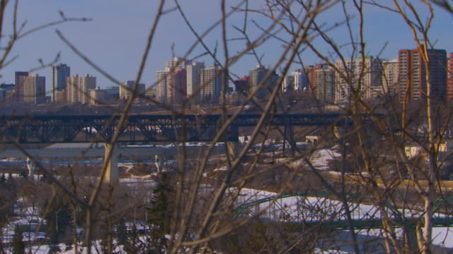 canadacity buildings through trees - edmonton stock videos and b-roll footage