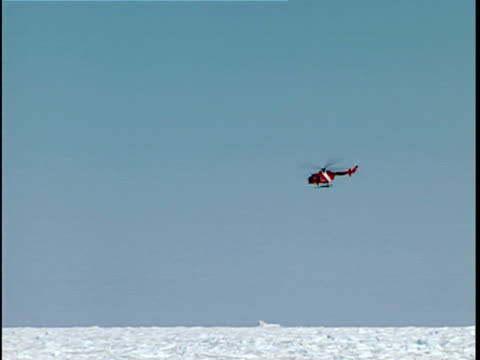 vidéos et rushes de ws pan canadian coast guard helicopter checking iceberg in thick pack ice, labrador sea, canada - iceberg bloc de glace