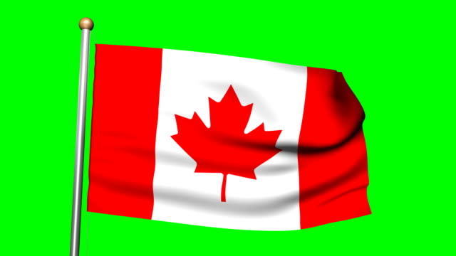 3D Canadian flag animation on the green screen HD