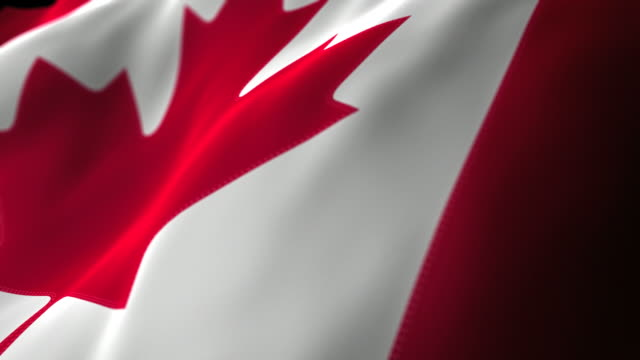 Canadian Flag Close Up - Looping