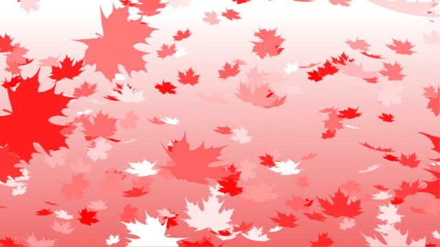 Canadian flag color falling leafs autumn loopable
