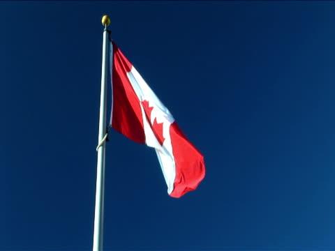 vídeos de stock e filmes b-roll de ms, canadian flag flapping against clear sky - bandeira do canadá