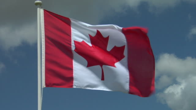 cu, canadian flag flapping against sky - bandiera del canada video stock e b–roll