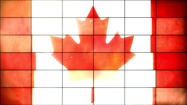 Canadian Flag - Grid Panel Loop (Full HD)