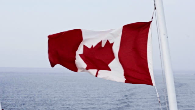 canadian flag in the wind - bandiera del canada video stock e b–roll
