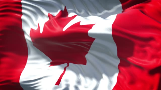 canadian flag is waving slowly in full screen 4k resolution - canadian flag stock videos & royalty-free footage