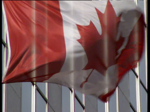 Canadian flag moving in wind by office buildings