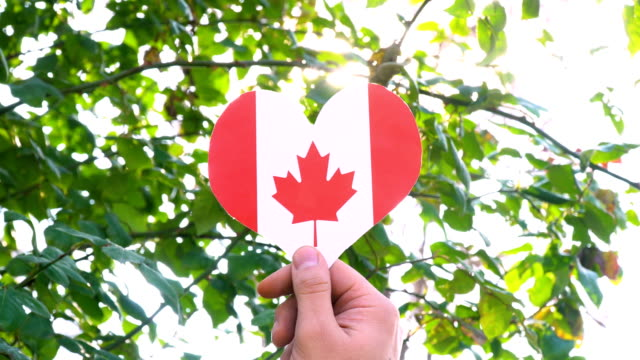 canadian flag on heart shape - bandiera del canada video stock e b–roll
