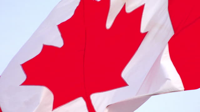 Canadian Flag or Flag of Canada waving during the daytime