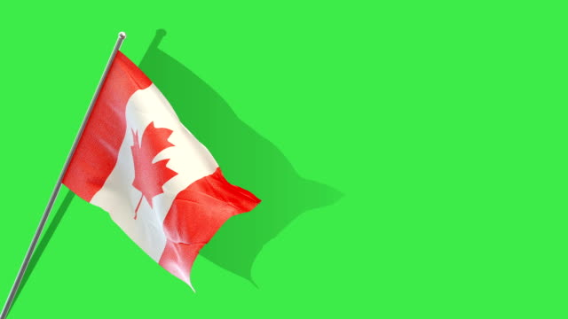 canadian  flag rising - canada stock videos & royalty-free footage