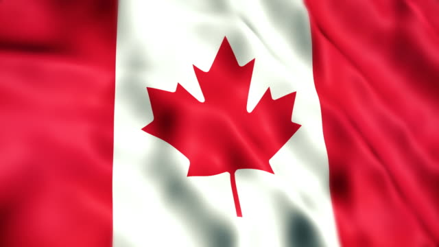canadian flag - canada stock videos & royalty-free footage