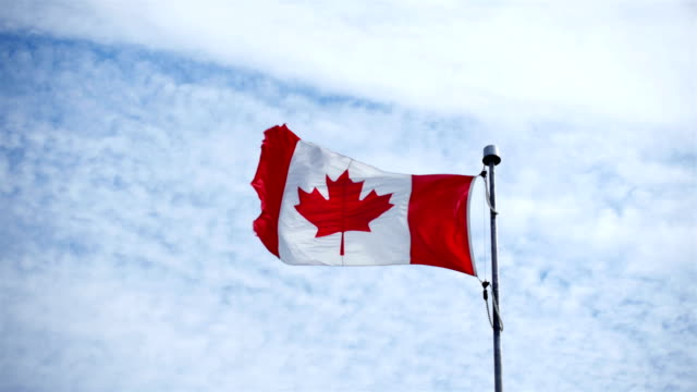 canadian flag - canadian flag stock videos & royalty-free footage